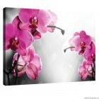 Tablou Canvas Orhidee Ticlam 1