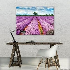 Tablou Canvas Lavanda 1 L