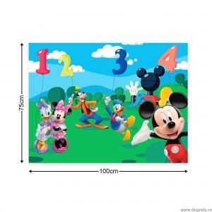 Tablou Canvas Mickey Mouse si prietenii