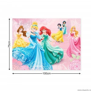 Tablou Canvas Printese Disney 1