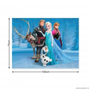 Tablou Canvas Frozen 1