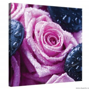 Tablou Canvas Trandafiri relaxare