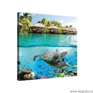 Tablou Canvas Lumea animalelor 1 3D