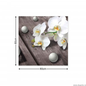 Tablou Canvas Orhidee 5