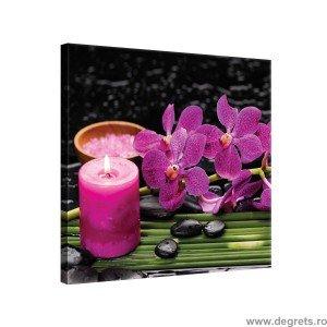 Tablou Canvas Orhidee 4 M