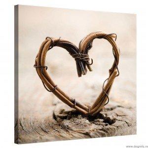 Tablou Canvas Inima tesuta