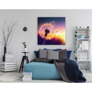 Tablou Canvas Papadie - apus M