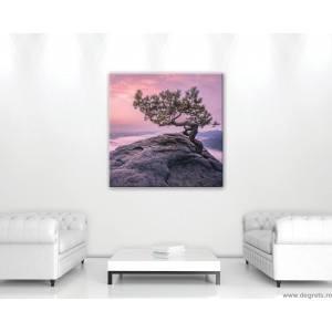 Tablou Canvas Lumea viselor 1 M
