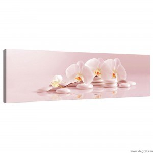 Tablou Canvas Orhidee 6
