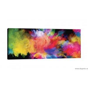 Tablou Canvas Graf color 2
