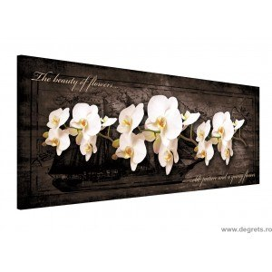 Tablou Canvas Orhidee 7