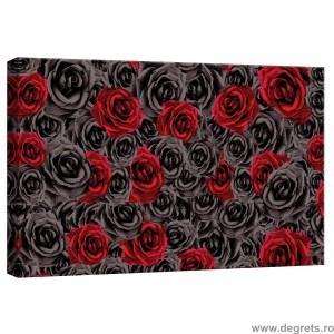 Tablou Canvas Trandafiri rosii - negru 3D