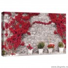 Tablou Canvas Perete cu flori rosii 1 S