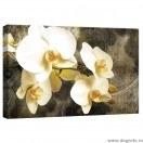 Tablou Canvas Orhidee 8