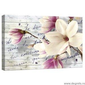 Tablou Canvas Magnolie Arta