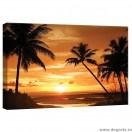 Tablou Canvas Palmier - apus S