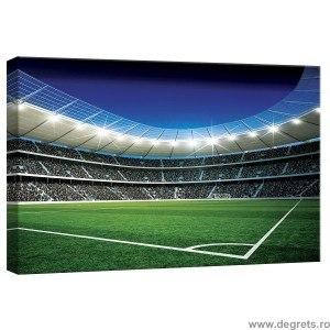 Tablou Canvas Stadion 1 S
