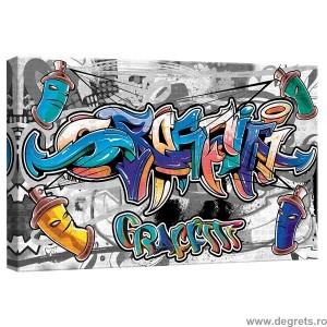 Tablou Canvas Graffiti S