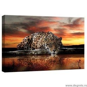 Tablou Canvas Leopard 2 S