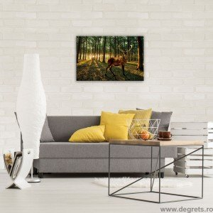 Tablou Canvas Caprioara in padure S