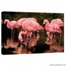 Tablou Canvas Flamingo 2