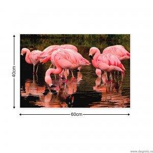 Tablou Canvas Flamingo 2
