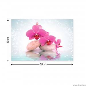 Tablou Canvas Orhidee 9