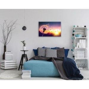 Tablou Canvas Papadie - apus S