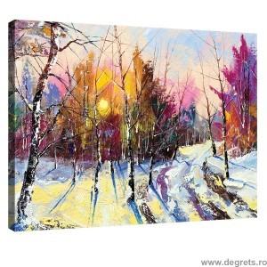 Tablou Canvas Iarna - peisaj padure S