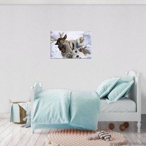 Tablou Canvas Frozen 4