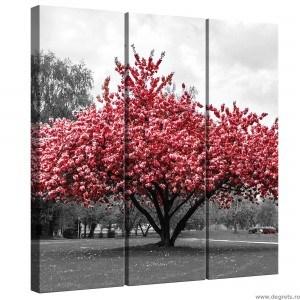 Set Tablou Canvas 3 piese Culoare roz