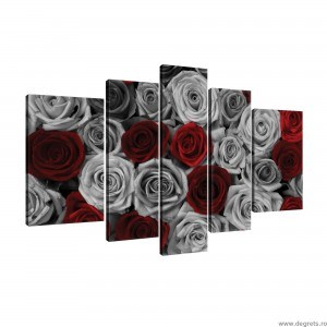 Set Tablou Canvas 5 piese Trandafiri rosu - gri