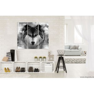 Set Tablou Canvas 3 piese Lup