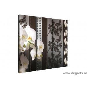 Set Tablou Canvas 3 piese Orhidee Eleganta 1