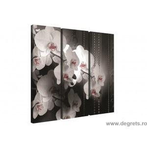 Set Tablou Canvas 3 piese Orhidee Eleganta 4