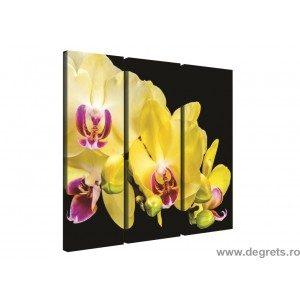 Set Tablou Canvas 3 piese Orhidee Galbena 3D