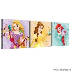 Set Tablou Canvas 3 piese Printese Disney 5