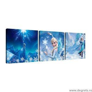 Set Tablou Canvas 3 piese Elsa 3