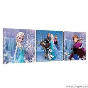 Set Tablou Canvas 3 piese Frozen 6