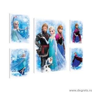Set Tablou Canvas 5 piese Frozen 9
