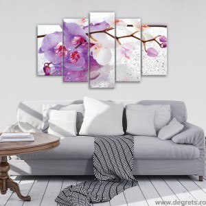 Set Tablou Canvas 5 piese Stropi de Orhidee