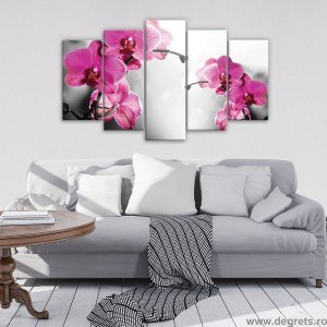 Set Tablou Canvas 5 piese Orhidee Ticlam 1