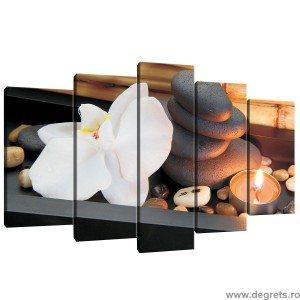Set Tablou Canvas 5 piese Zen