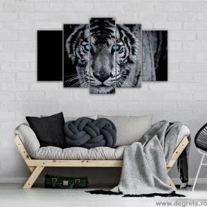 Set Tablou Canvas 5 piese Tigru 1 3D