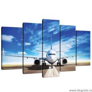 Set Tablou Canvas 5 piese Avion in zbor