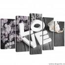 Set Tablou Canvas 5 piese Dragoste 1