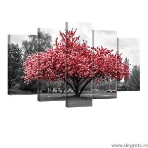 Set Tablou Canvas 5 piese Culoare roz
