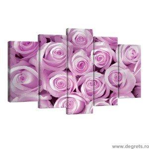 Set Tablou Canvas 5 piese Trandafiri roz 1
