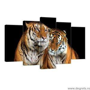 Set Tablou Canvas 5 piese Tigru