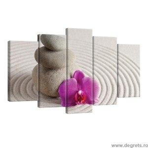 Set Tablou Canvas 5 piese Orhidee spa mov
